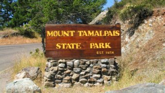 Driver Killed After Plunging Off Cliff in Mt. Tamalpais Park