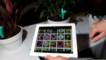 From Flower Power to iPotty? Wacky Gadgets at CES