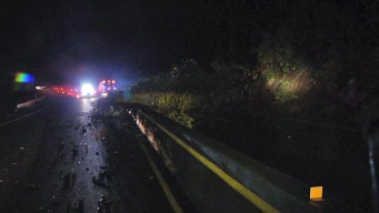 Drivers Left Stranded for Hours After Tree Falls, Blocks Lanes on Highway 17