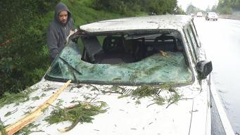 Crashing Tree Busts Woman's Windshield Along Highway 13 in Oakland