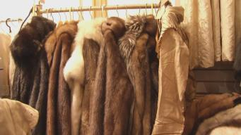 Woman Accused of Selling Illegal Fur Says She's Being Singled Out
