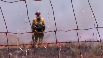 Firefighters on Alert During Bay Area Heat Wave
