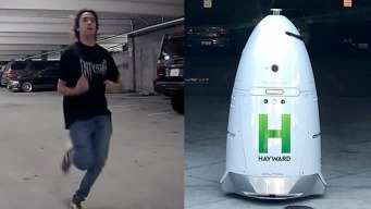 Person Wanted in Hayward Security Robot Attack: Police