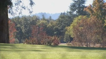 Menlo Country Club a Top Water Waster: SFPUC