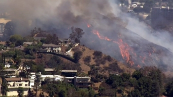Brush Fire Scorches 15 Acres in Hollywood Hills