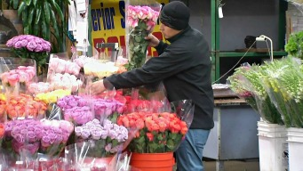 Happy Valentine's Day! Bay Area Flower Business Bustling