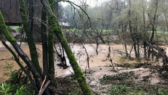 San Lorenzo River Continues to Rise Above Flood Stage