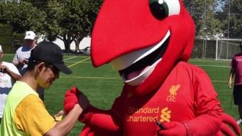 Liverpool Ambassadors Coach Special Olympics Soccer Clinic