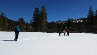 Late-Winter Storms Piling Up Snow in the Sierra Nevada