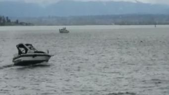 Whale Watching Boat Strikes Whale in Washington