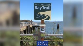 SF Bay Trail Essay