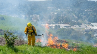 Marin Parks Fire Strategy