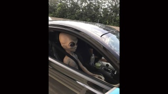 Cops Pull Over Speeding Man With Alien Doll Passenger