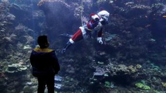 Scuba-Diving Santa Claus Delights Children in San Francisco
