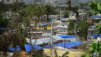 FEMA Faulted For Failed Hurricane Aid by Florida Company