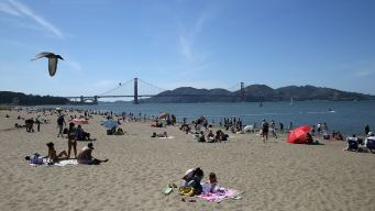 90s in the Forecast for Some as Warming Trend Grips Bay Area