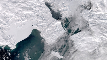 Pace of Bering Sea Changes Startles Scientists