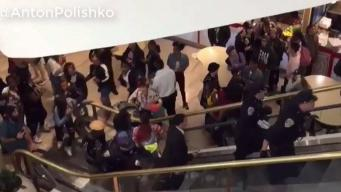 Brawl Breaks Out at Westfield Mall in SF