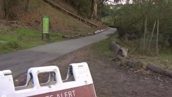 Coyote Attacks Dog at San Francisco Dog Park