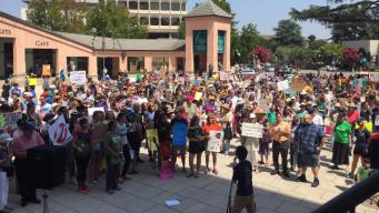 Hundreds 'Stand Up for Equality and Diversity' in South Bay