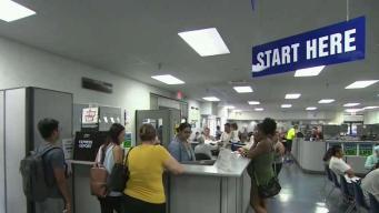 DMV Warns of 'Summer Surge' as People Seek REAL IDs