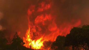 Fire Trucks Stolen From Firefighters in Mariposa County