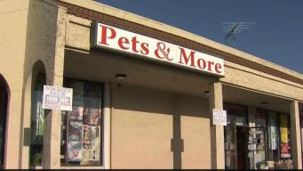 Fire Quickly Extinguished at Pet Store in Campbell