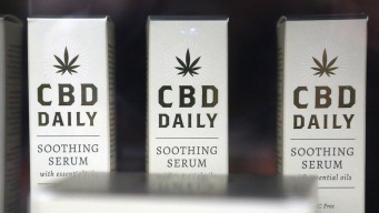 Interested in CBD? Here's What You Should Know