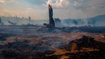 Climate Danger Zones: Amazon Rainforest