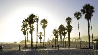 Regulators to Review LA's 30-Year-Old Beach Curfew