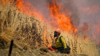 County Fire in Napa, Yolo Counties 100 Percent Contained