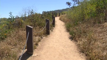 Hiker Finds Body in Anthony Chabot Regional Park