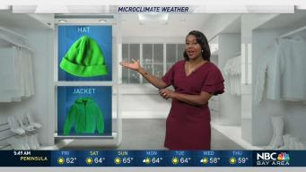 Kari's Forecast: Mild and Partly Cloudy