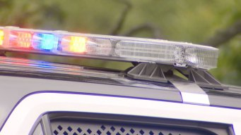 About 20 Vehicles Vandalized in Pacifica Neighborhood: PD