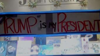 Political Tension in Los Gatos