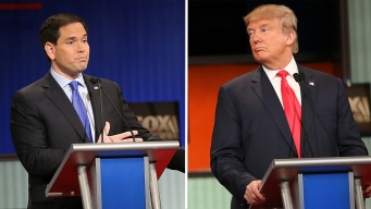 Poll: Trump Holds Lead in N.H., Rubio Gains Ground