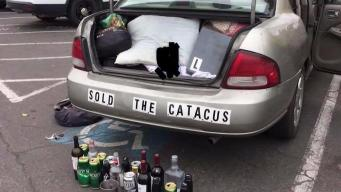 Open Alcohol Bottles, Cans Found in a Car