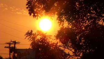 Triple Digit Temperatures in Parts of East Bay