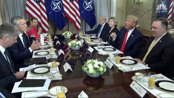 Trump Lashes Out At NATO Allies