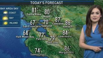 Vianey's Forecast: Comfortable Conditions