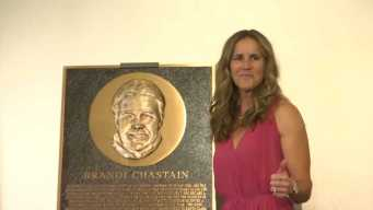 Fans: Plaque Makes Brandi Chastain Look Like Gary Busey