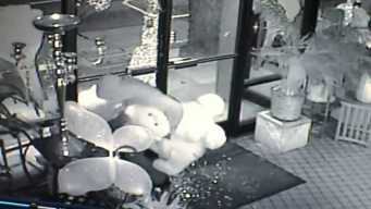 Thief Breaks Into Flower Shop, Takes Teddy Bears and Flowers