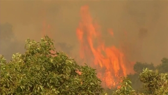 Bay Area Firefighters Head South to Battle Thomas Fire