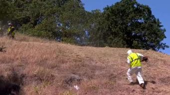 Wildfire Prevention Across Contra Costa County