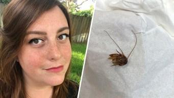 Florida Woman's Gruesome Roach-in-Ear Tale Goes Viral