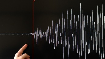Tsunami Generated by 8.0 Quake in South Pacific