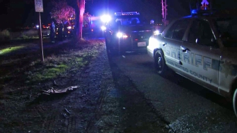 Police, Fire Crews Respond to Shooting in East Palo Alto