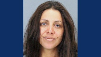 Los Gatos Woman Arrested in Cupertino Slaying