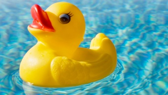 Stolen Rubber Duck Returned After 5-Year Adventure, Mystery