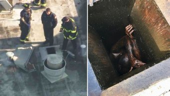 Man Rescued After Being Stuck in Restaurant Vent for 2 Days